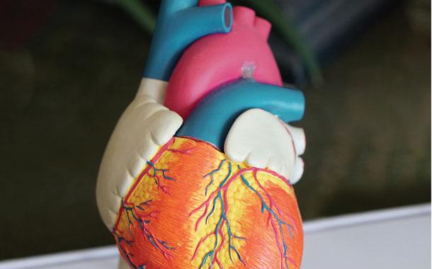 심장에 생기는 문제