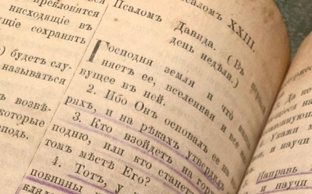 사브카의 책