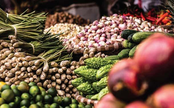 채식 생활 방식